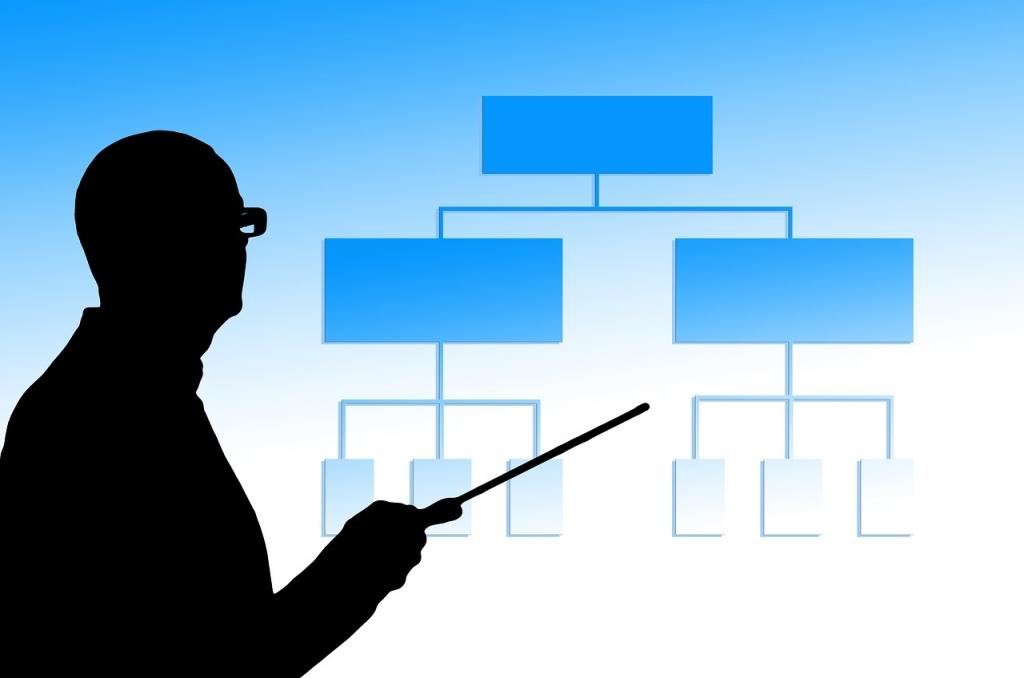 business process technology developer